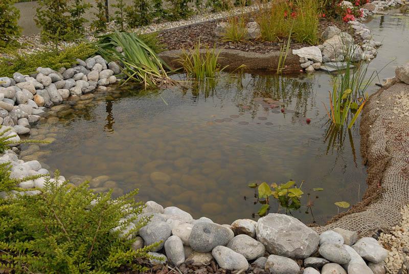Plans d eau bassins d ornement a r h tp - Amenagement bassin aquatique ...