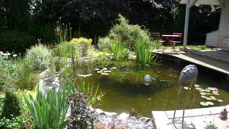Beautiful bassin d ornement jardin 10 bassin d ornement for Bassin d eau jardin