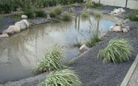 Bassins aquatiques